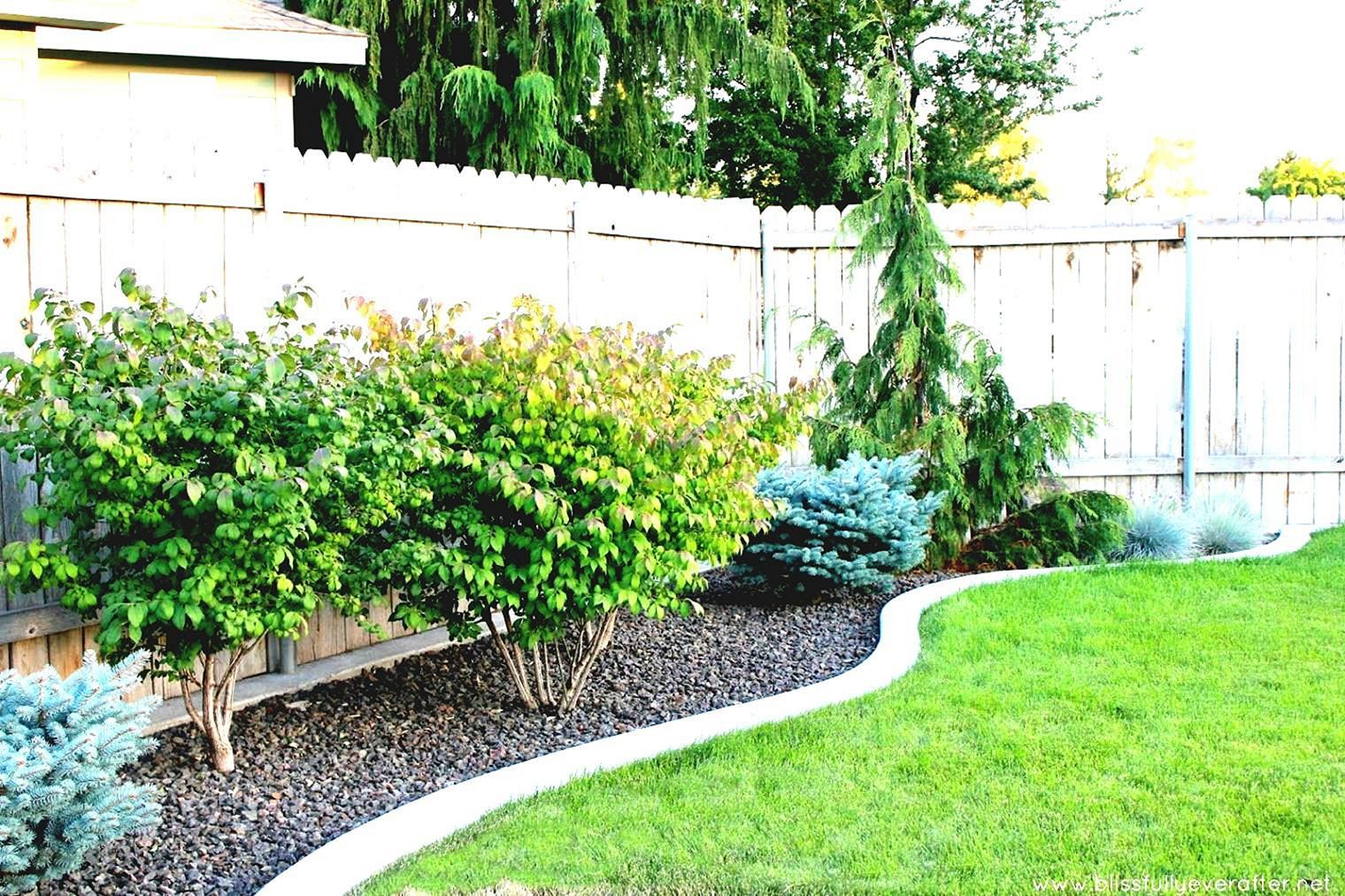 24 Marvelous Simple Backyard Landscaping Ideas On A Budget Plants inside 11 Clever Designs of How to Build Simple Backyard Ideas For Small Yards