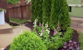 30 Big Tips And Ideas To Create Backyard Privacy Landscaping throughout Backyard Privacy Landscaping Ideas