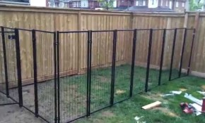 Backyard Renovation Building The Dog Fence Part 2 Youtube inside 11 Clever Ways How to Improve Backyard Fencing Ideas For Dogs