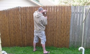 Bamboo Privacy Fence Backyard Home Decor Inspirations Bamboo intended for Backyard Privacy Fences