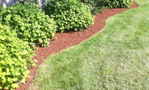 Easy Landscaping Ideas Low Maintenance Landscape Design Tips throughout 10 Some of the Coolest Concepts of How to Upgrade Simple Backyard Landscaping