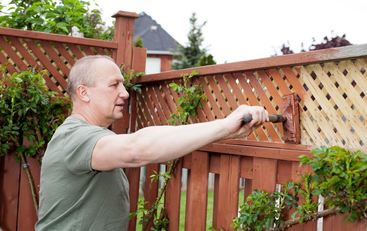 How To Paint Outside Fence Photos Wallpaper Clikimageco within Painting Backyard Fence