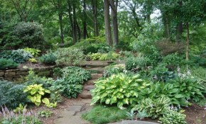 Pacific Northwest Native Garden Design Google Search Gardening intended for Northwest Backyard Landscaping Ideas