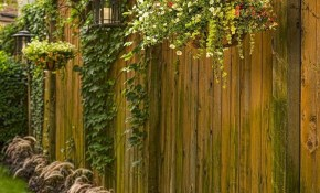 Pretty Diy Backyard Privacy Fence Ideas Decor Its pertaining to 10 Smart Ideas How to Improve Backyard Privacy Ideas