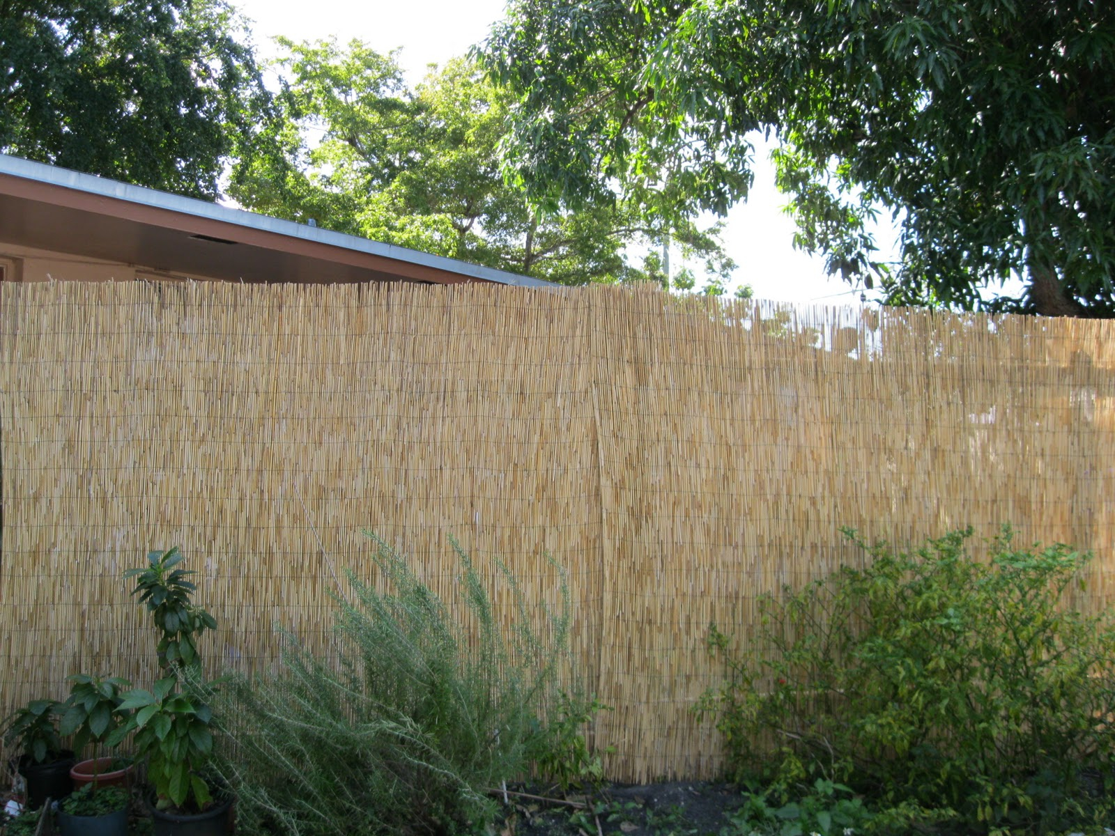 1 Landscaping Landscaping Ideas For Backyard X Scapes Rolled Bamboo throughout Backyard X Scapes Rolled Bamboo Fencing