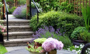 14 Small Yard Landscaping Ideas To Impress Family Handyman intended for Landscaping Small Backyard