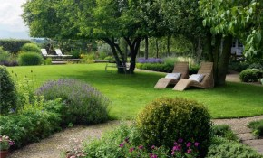 50 Backyard Landscaping Ideas To Inspire You intended for Landscaping For Backyard