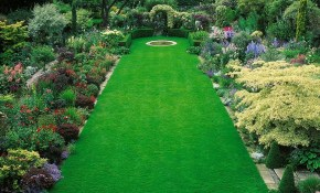 65 Incredible Large Backyard Design Ideas On A Budget Fres Hoom for Large Backyard Landscaping