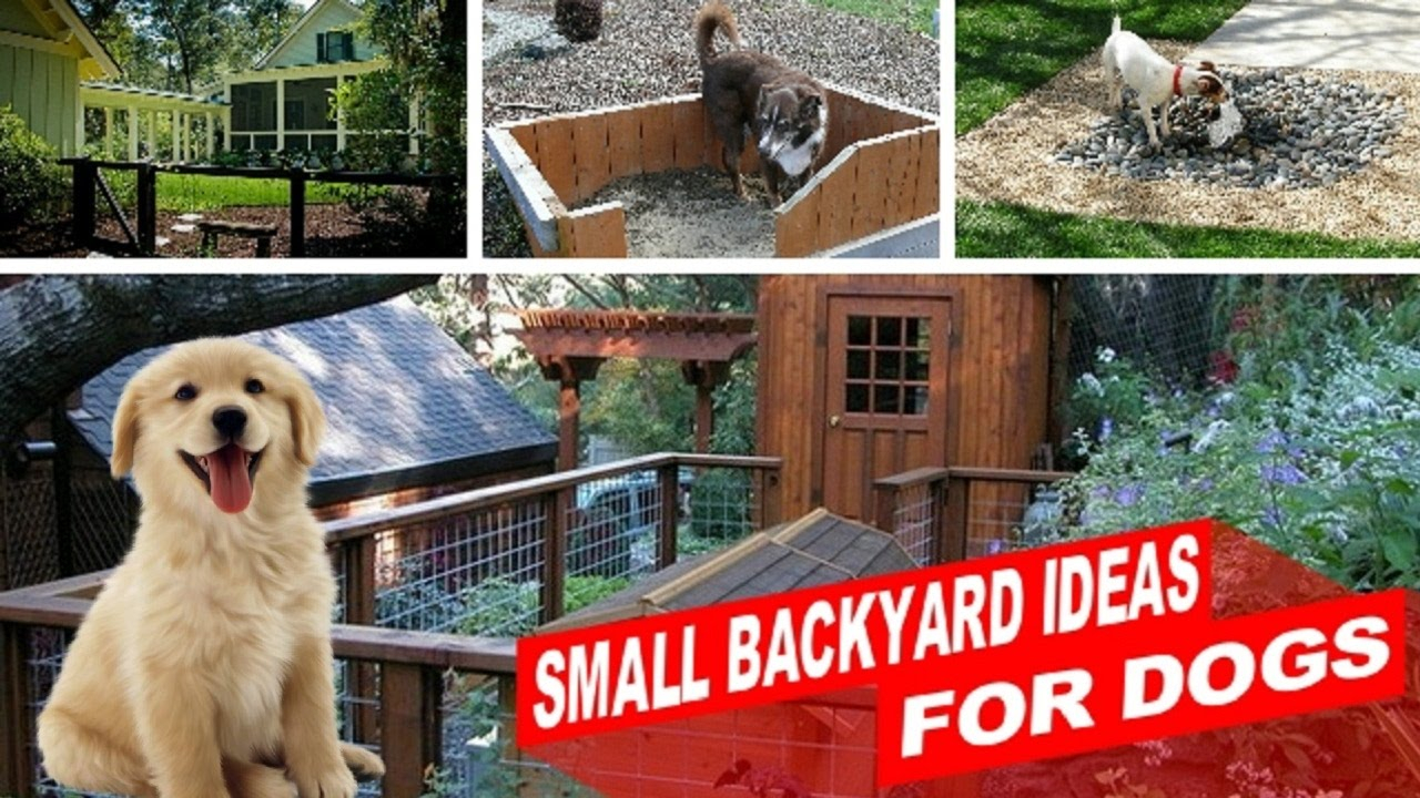 Amazing Small Backyard Ideas For Dogs Youtube intended for 13 Genius Designs of How to Make Landscaping Ideas For Backyard With Dogs