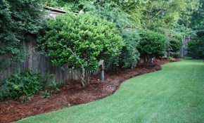 Cheapest Landscaping For Long Narrow Backyards Our Backyard Is pertaining to 12 Awesome Ideas How to Build Long Backyard Ideas