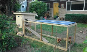 Coop Plans Mobile Chicken Coop Designs Free inside Backyard Chicken Coop Ideas