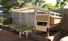 Daniel A Giles regarding 10 Genius Tricks of How to Make Backyard Chicken Coop Ideas