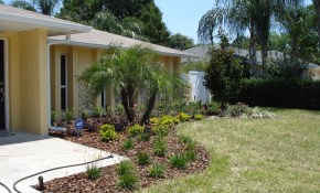 Florida Backyard Landscaping Ideas Green House within 13 Awesome Designs of How to Upgrade Florida Backyard Ideas
