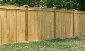 Inexpensive Dog Fence Ideas Elegant Backyard Dog Fence Awesome throughout 10 Some of the Coolest Initiatives of How to Makeover Cheap Backyard Fence Ideas
