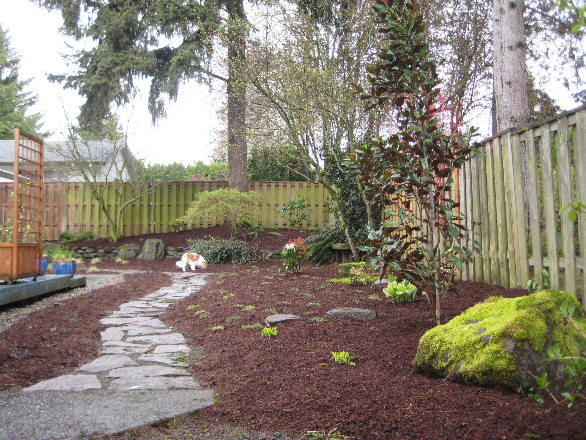 Landscaping Ideas For Small Yards With Dogs Garden Ideas throughout 13 Genius Designs of How to Make Landscaping Ideas For Backyard With Dogs