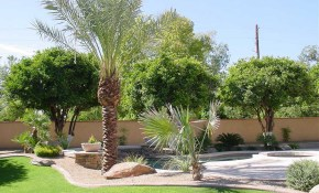 Large Backyard Design With Desert Landscaping Themes Homescorner intended for 14 Genius Designs of How to Craft Backyard Desert Landscaping
