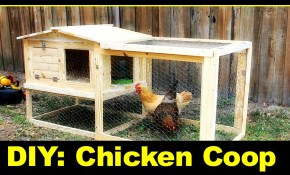 Simply Easy Diy Diy Small Backyard Chicken Coop regarding 10 Genius Tricks of How to Make Backyard Chicken Coop Ideas