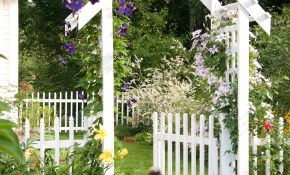 20 Landscaping Ideas To Perk Up Your Backyard throughout 14 Awesome Ideas How to Improve Cheap Landscaping Ideas Backyard