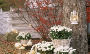 50 Best Outdoor Halloween Decorations Easy Halloween Yard And throughout 13 Genius Ideas How to Build Backyard Halloween Decorations