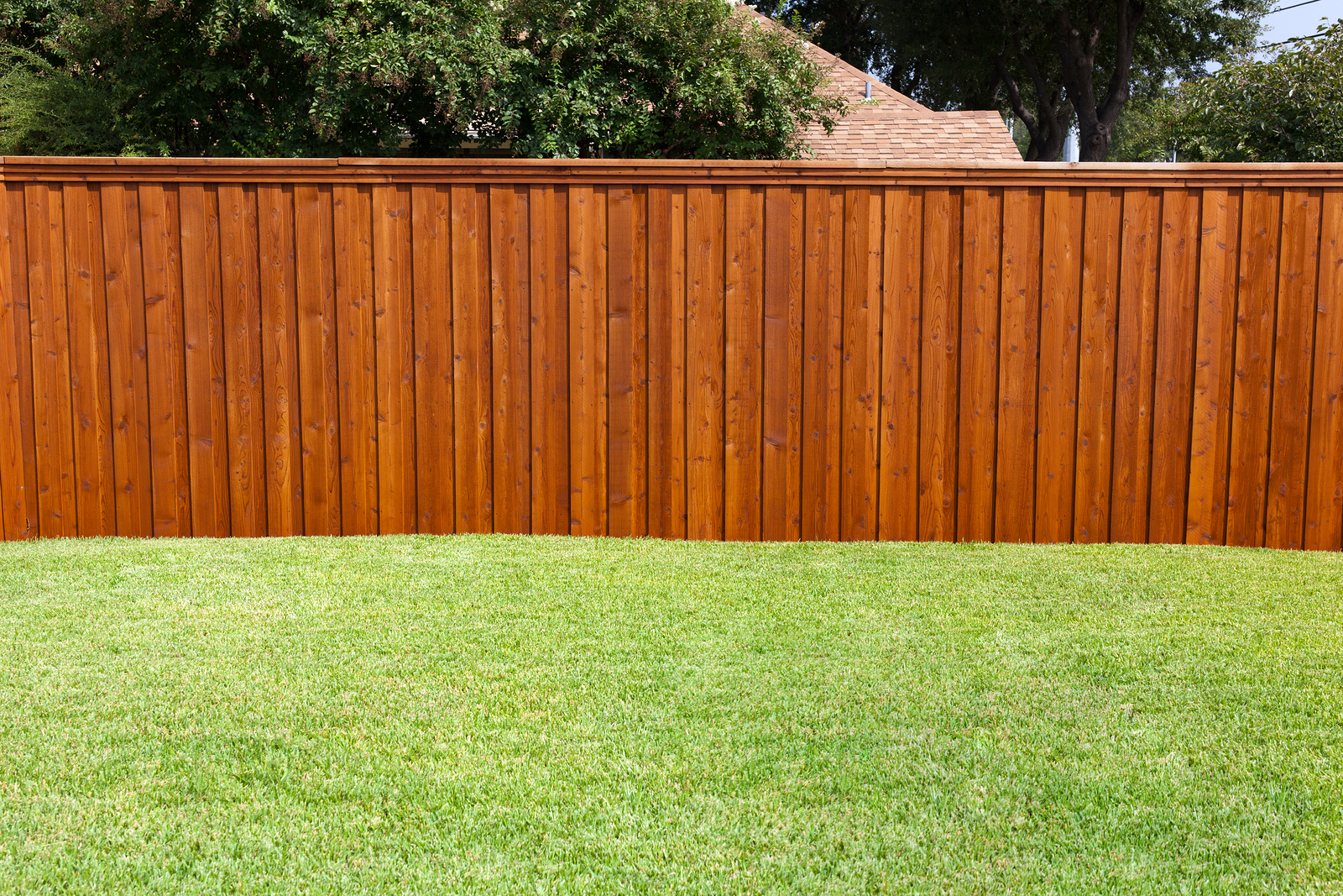 6 Reasons To Install A Fence Around Your Backyard Themocracy inside Fence For Backyard
