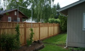 Backyard Fencing Options Real Bar And Bistro Best Backyard Fence in 12 Clever Designs of How to Craft Fence Options For Backyard