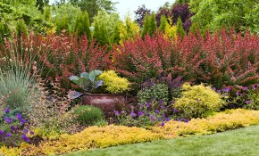 Easy Landscaping Ideas in 11 Smart Tricks of How to Build Backyard Landscaping Plans