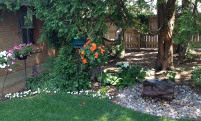 Make Your Backyard A Haven Fort Worth Tx inside Landscaping Your Backyard