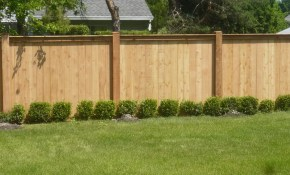Maple Wood Material Fence For Backyard Design Ideas With Plants pertaining to 11 Genius Designs of How to Craft Cheap Fences For Backyard