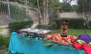 Outdoor Luau Backyard Party Ideas Party Decor Ideas Home Pinterest with 12 Clever Designs of How to Craft Luau Backyard Party Ideas