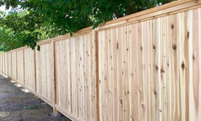 Privacy Fence Ideas Deliredutchatfr pertaining to 16 Awesome Concepts of How to Upgrade Privacy Fence Ideas For Backyard