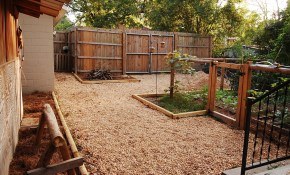 Backyard Cheap Idea Desert Landscaping Urban Self intended for How To Landscape A Backyard On A Budget