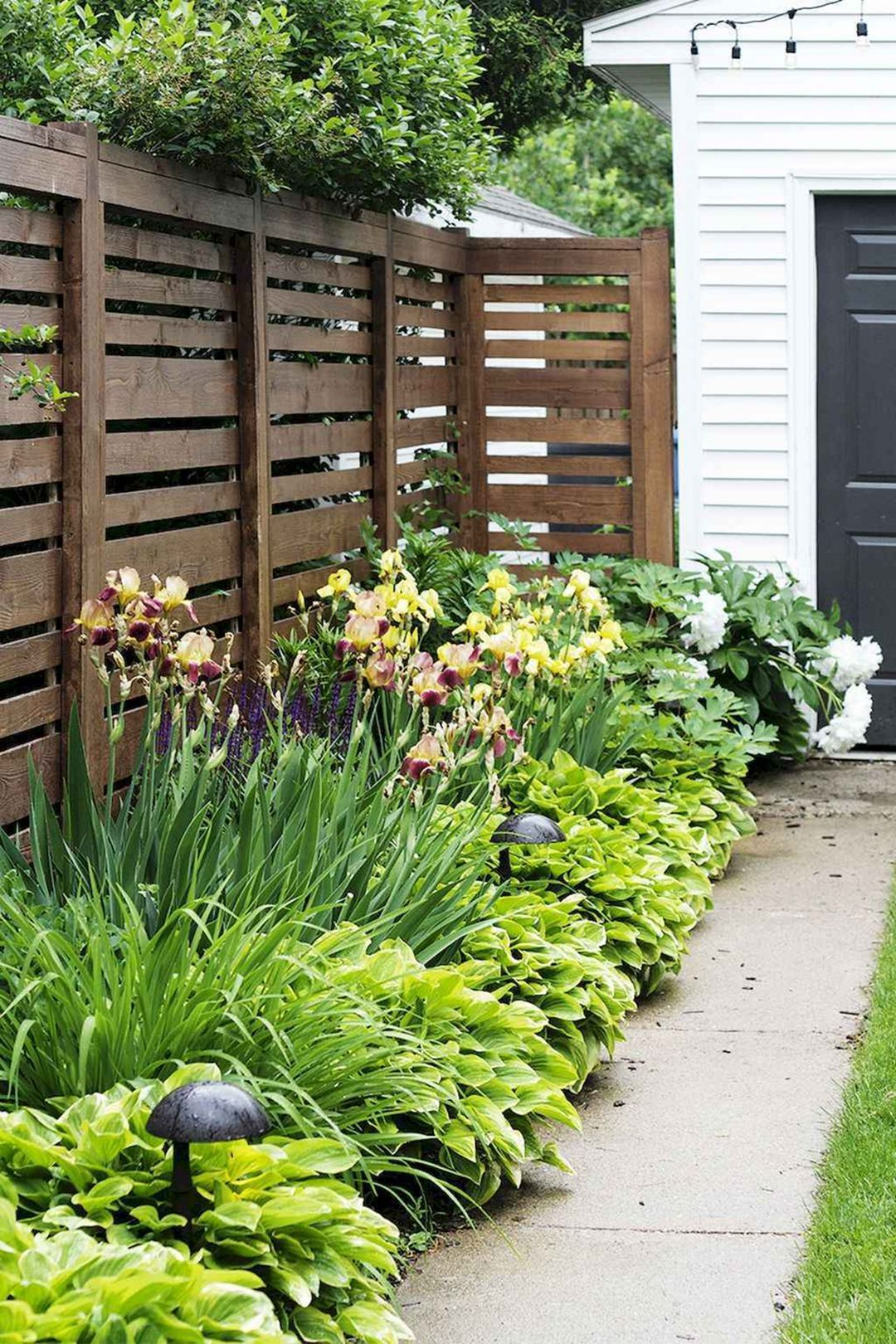 Backyard Privacy Fence Landscaping Ideas On A Budget Decor pertaining to 14 Awesome Initiatives of How to Craft Privacy Backyard Ideas