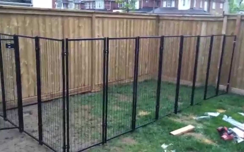 Backyard Renovation Building The Dog Fence Part 2 in 10 Some of the Coolest Ways How to Make Backyard Dog Fence