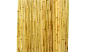 Backyard X Scapes 6 Ft H X 8 Ft W X 1 In D Natural Rolled Bamboo Fence Panel with regard to Backyard X Scapes Reed Fencing