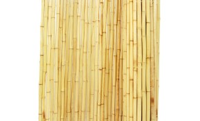 Backyard X Scapes Bamboo Fencing Natural for 10 Smart Ways How to Make Backyard X Scapes Reed Fencing