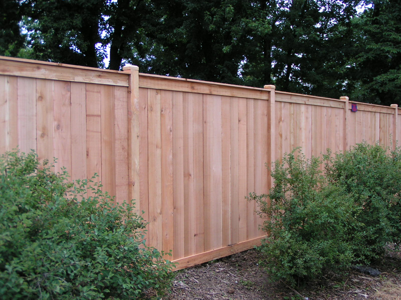 House Wood Fence Repair All Home Decor Attractive Wood in Backyard Fence Repair