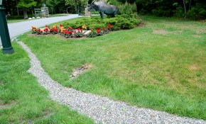How To Install A French Drain In Your Landscaping in 15 Clever Ways How to Make Drainage Ideas For Backyard
