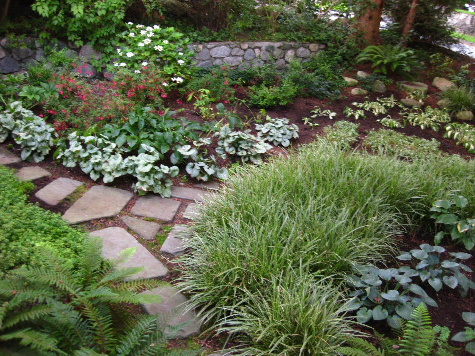 Landscaping A Shady Corner Gardening Chronicles Replace in 13 Awesome Concepts of How to Make Shaded Backyard Ideas
