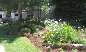 New Landscapes Garden And Yard Colorado Landscaping inside 10 Genius Ways How to Improve Colorado Backyard Landscaping Ideas
