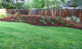 Our Boulder Area Landscaping Projects Landscaping Ideas regarding Colorado Backyard Landscaping Ideas