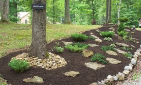 Perfect Inexpensive Hillside Landscaping Ideas For Backyard in Backyard Hillside Landscaping Ideas