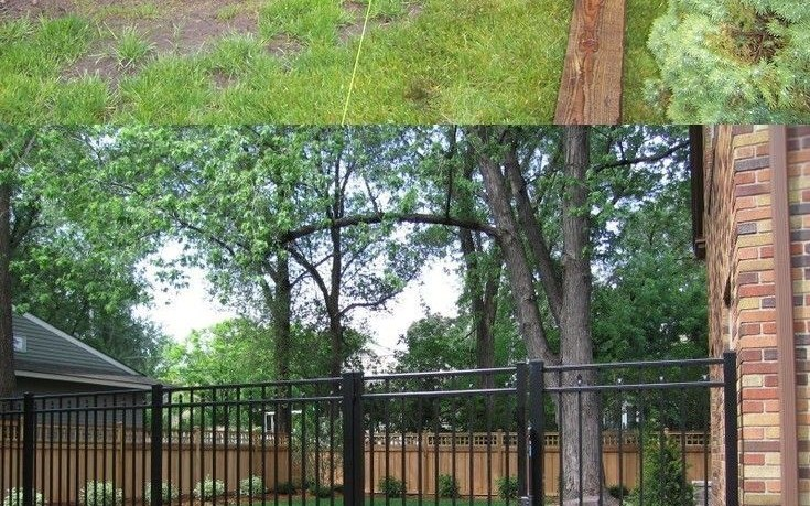 Read About Backyard Fence Options Diy Fence Ideas Glass within 11 Genius Ideas How to Make Backyard Fence Options