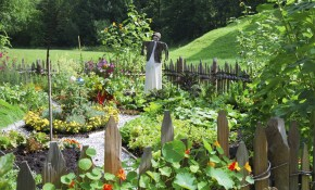 Vegetable Garden Design Ideas For Designing A Vegetable Garden regarding Vegetable Garden Design Ideas Backyard