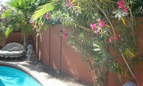 What A Little Stucco And Paint Can Do For Your Block Fence Tukee Talk with regard to 11 Awesome Designs of How to Upgrade Backyard Fence Paint Colors