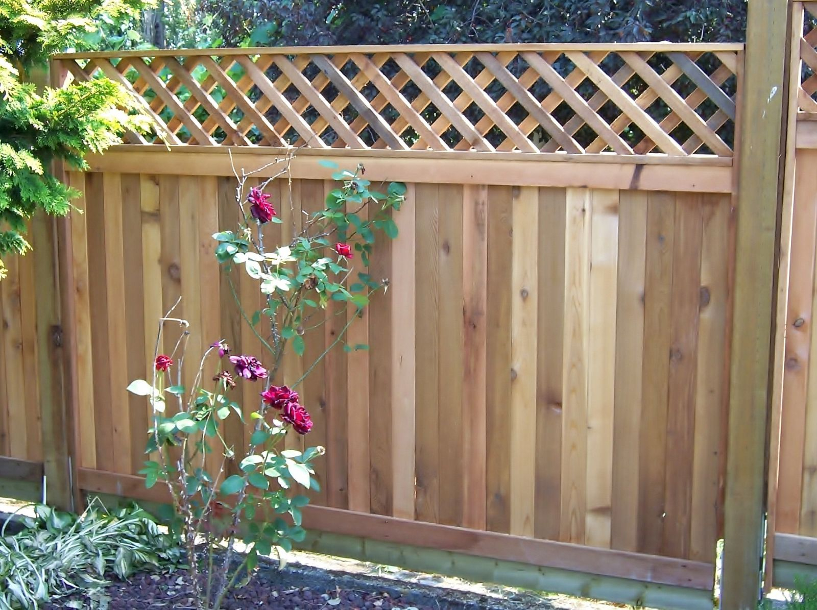 What Are The Most Popular Types Of Wood Fences with regard to Fences For Backyards Types