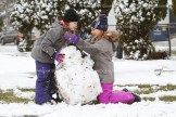 tps_snowball_6298