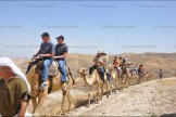 The 37 Canadian visitors ride on camels through Genesis Land overlooking the Jordan Valley, Jericho and the Judean Desert.