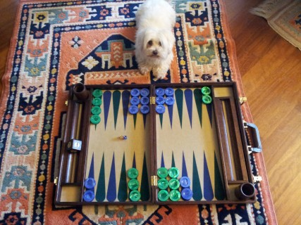 Backgammon and Life (1) Backgammon Playing Us