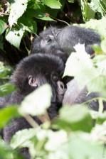 Janja et son bébé