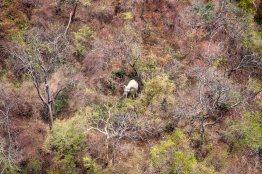 Chizarira National Park, Zimbabwe